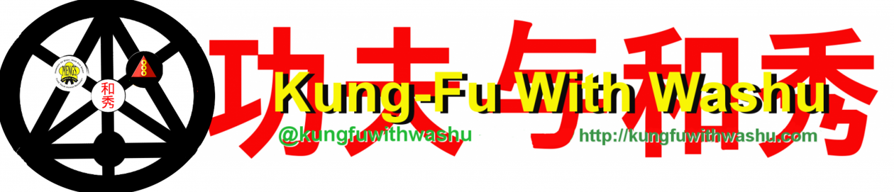 Kung-Fu with Washu